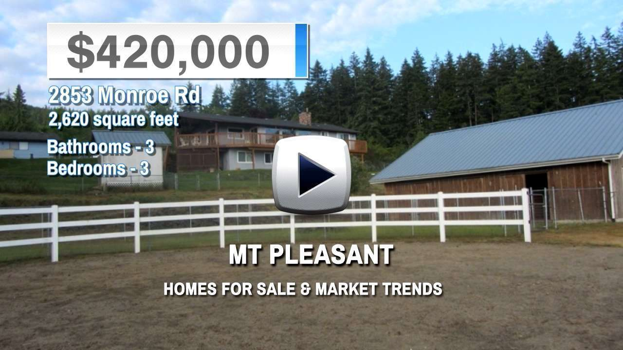 Mt Pleasant Homes for Sale and Real Estate Trends